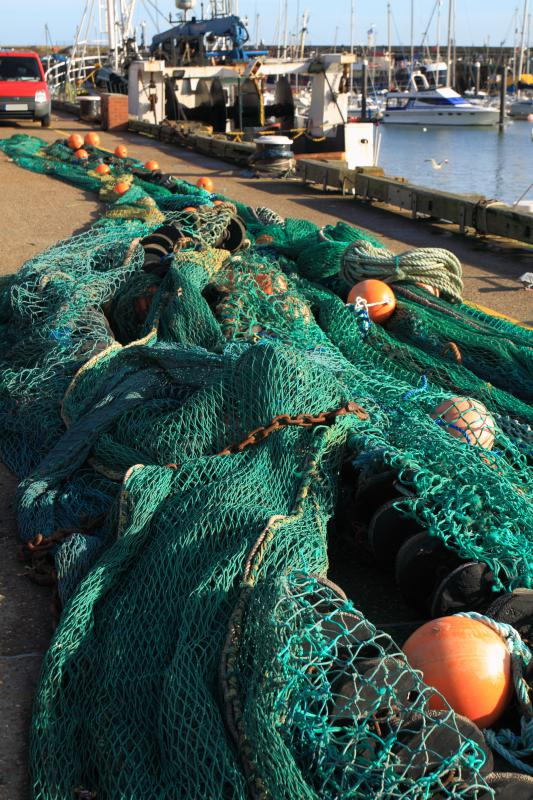 What are the different types of fishing with pictures for Types of fishing nets
