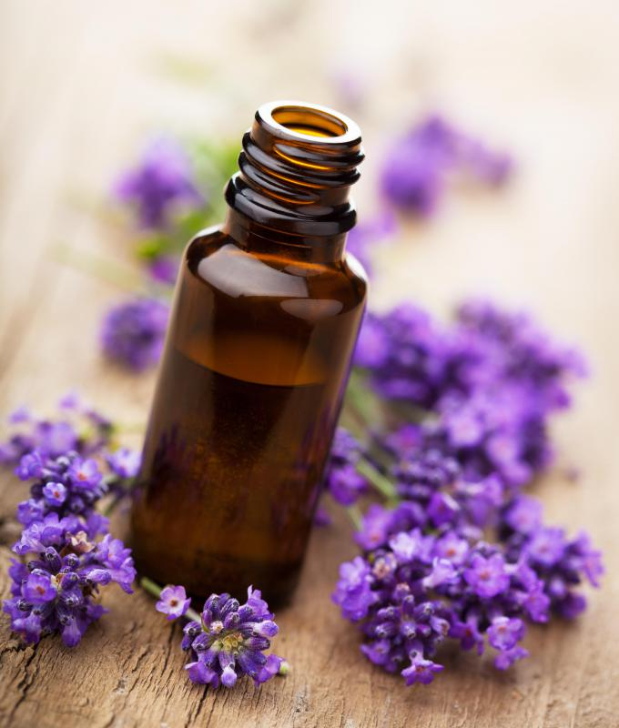 Lavender oil is believed to have many health benefits.