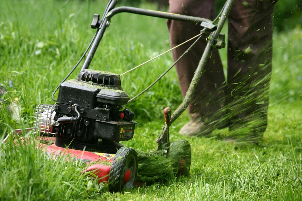 Mowing lawns may be excellent summer jobs for people.