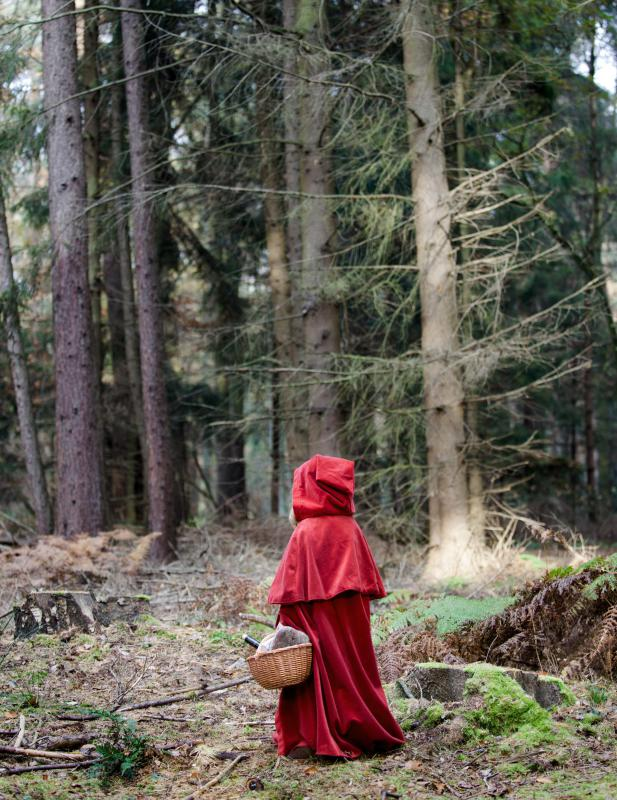 "The Grimm Brothers wrote a version of ""Little Red Riding Hood."""
