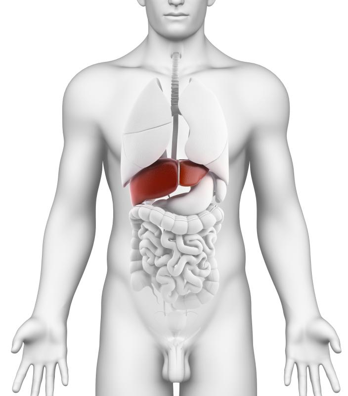 Liver problems may lead to gynecomastia.
