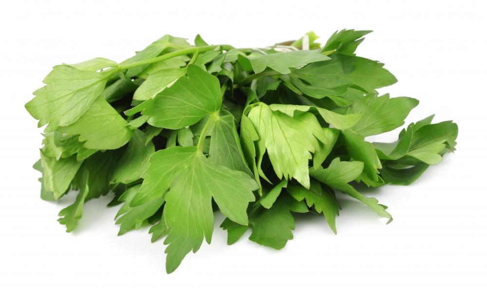Lovage may be added to chicken corn soup.
