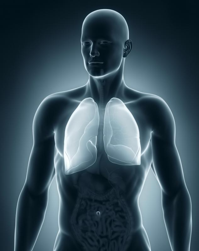 The pleural space, the area around the lungs, is the most common place to develop an empyema.