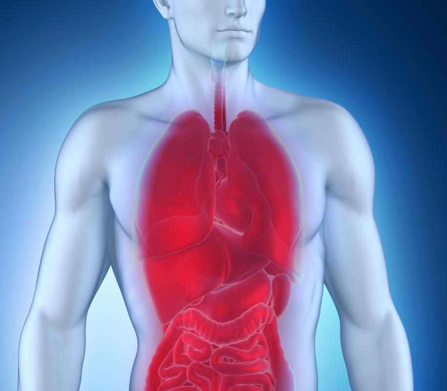 People suffering from cystic fibrosis often experience chronic respiratory infections.
