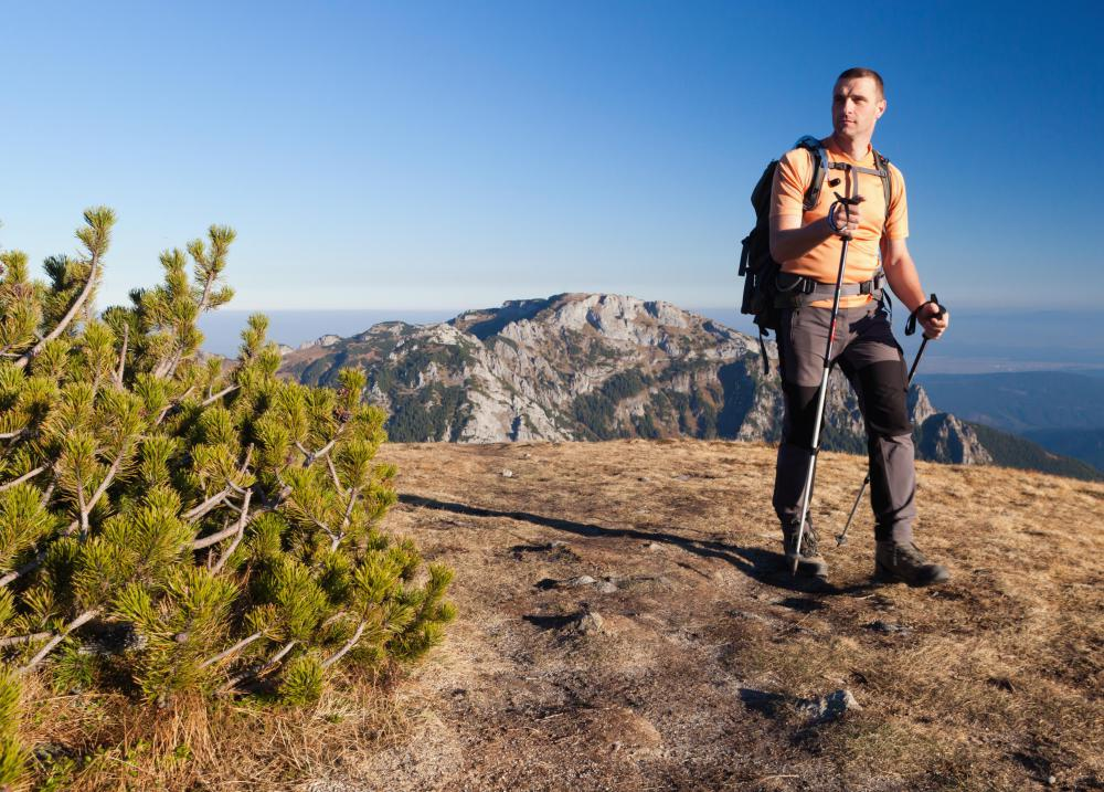 Hiking pants made of synthetic materials may resist tearing and moisture from rain.