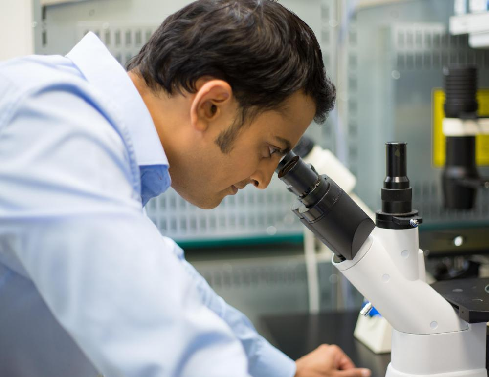 A marine biologist may choose to specialize in studying microscopic organisms.
