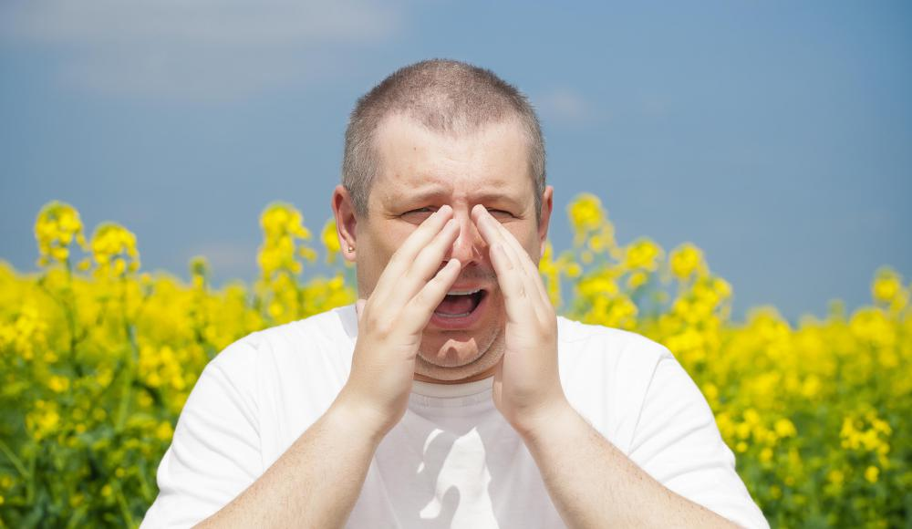Allergies may be the cause of problems with the eustachian tube.