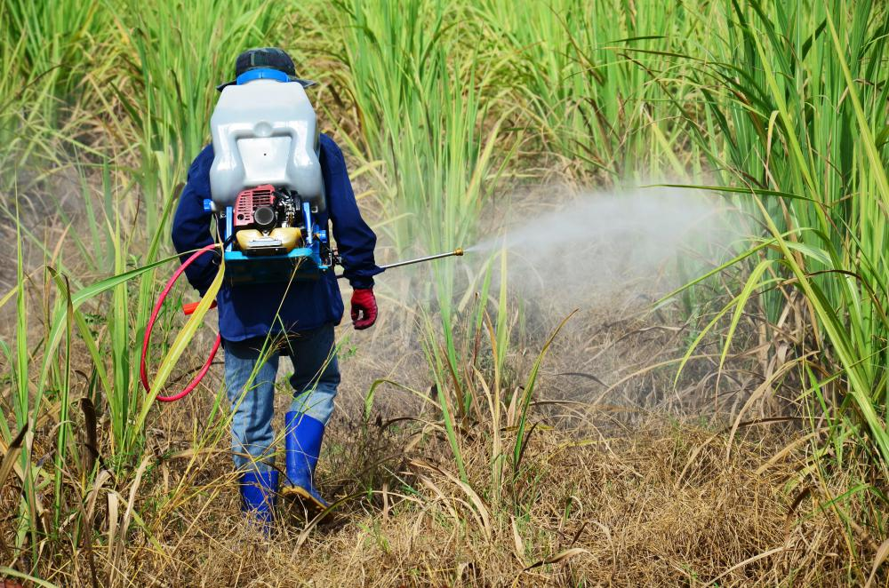 An agriculturist may develop herbicides or pesticides.