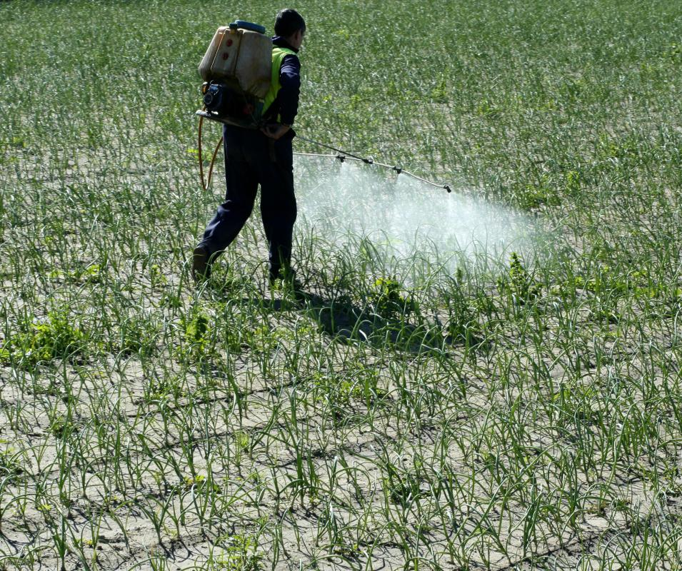 Benzene is used to make pesticides.