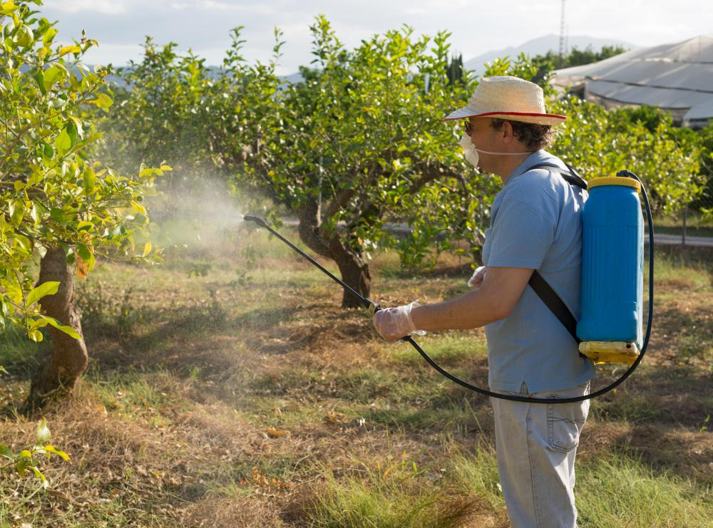 Exposure to pesticides has been linked to ADD in some studies.
