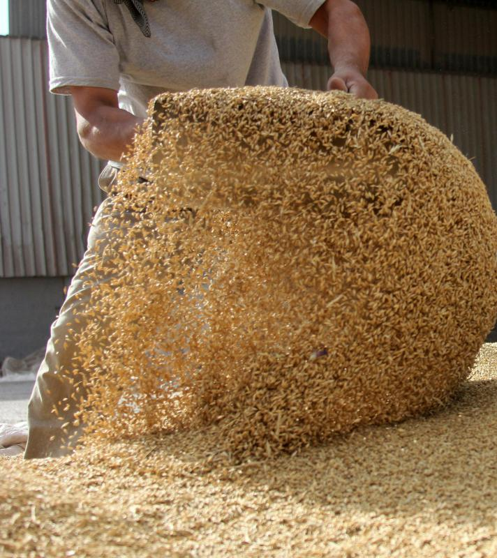 Antiobiotic use in cattle feed has brought controversy.