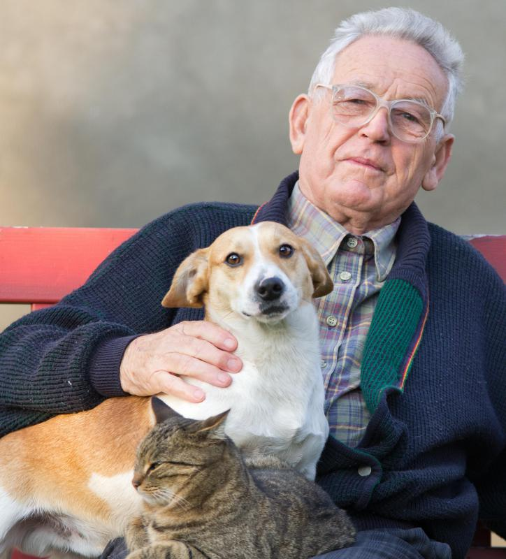 Spending time with a dog may help to reduce stress in the elderly.