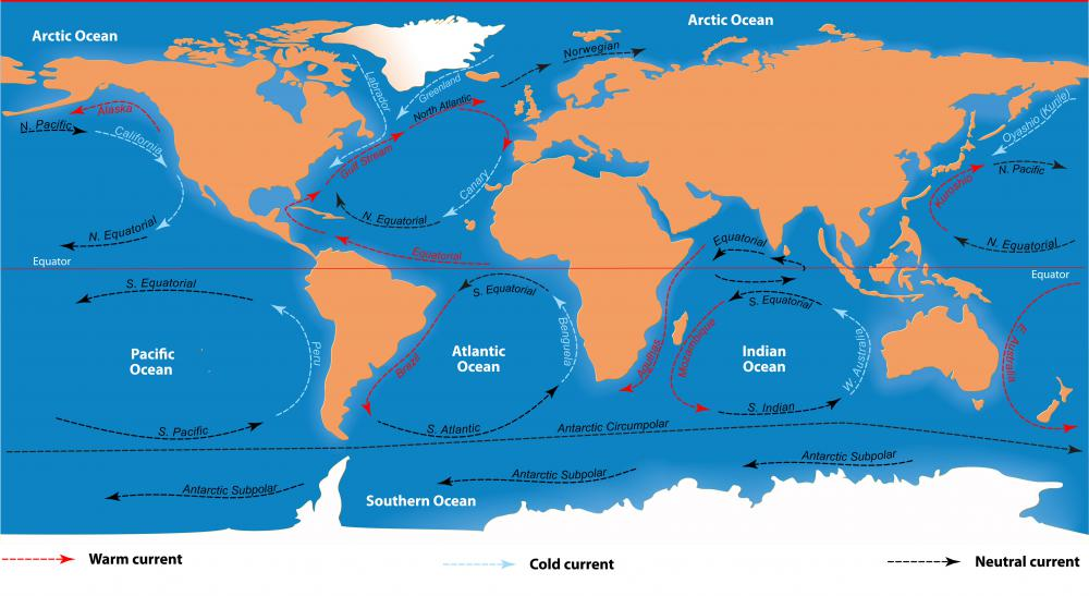Ocean currents are monitored by a climatologist.