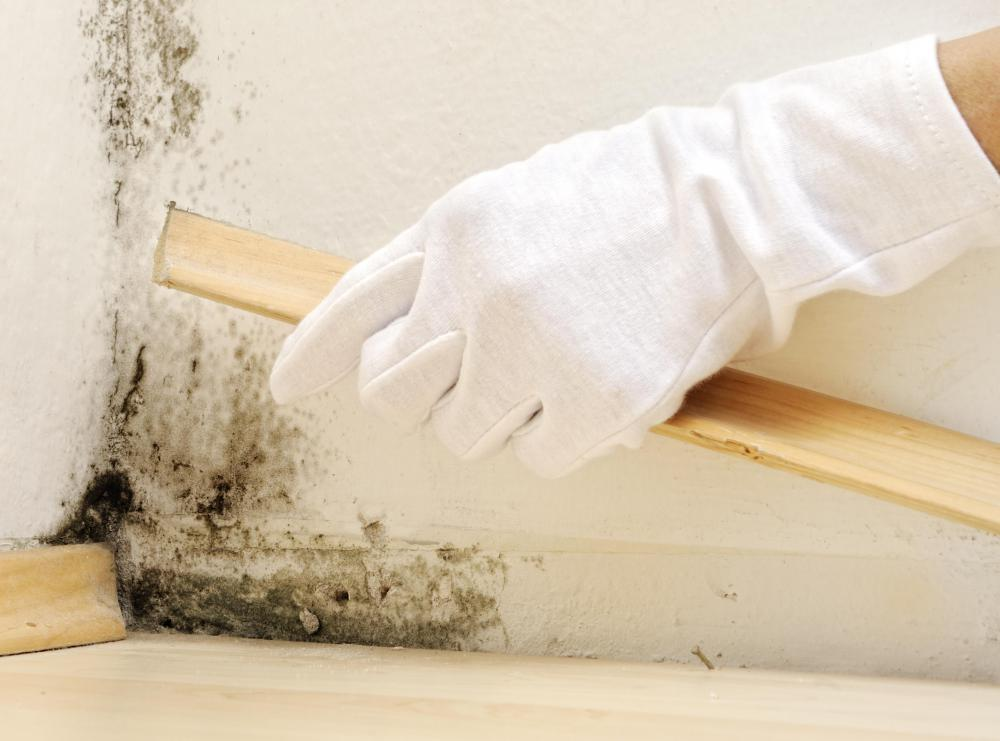 Use a bleach and water solution to remove mildew and its odor.