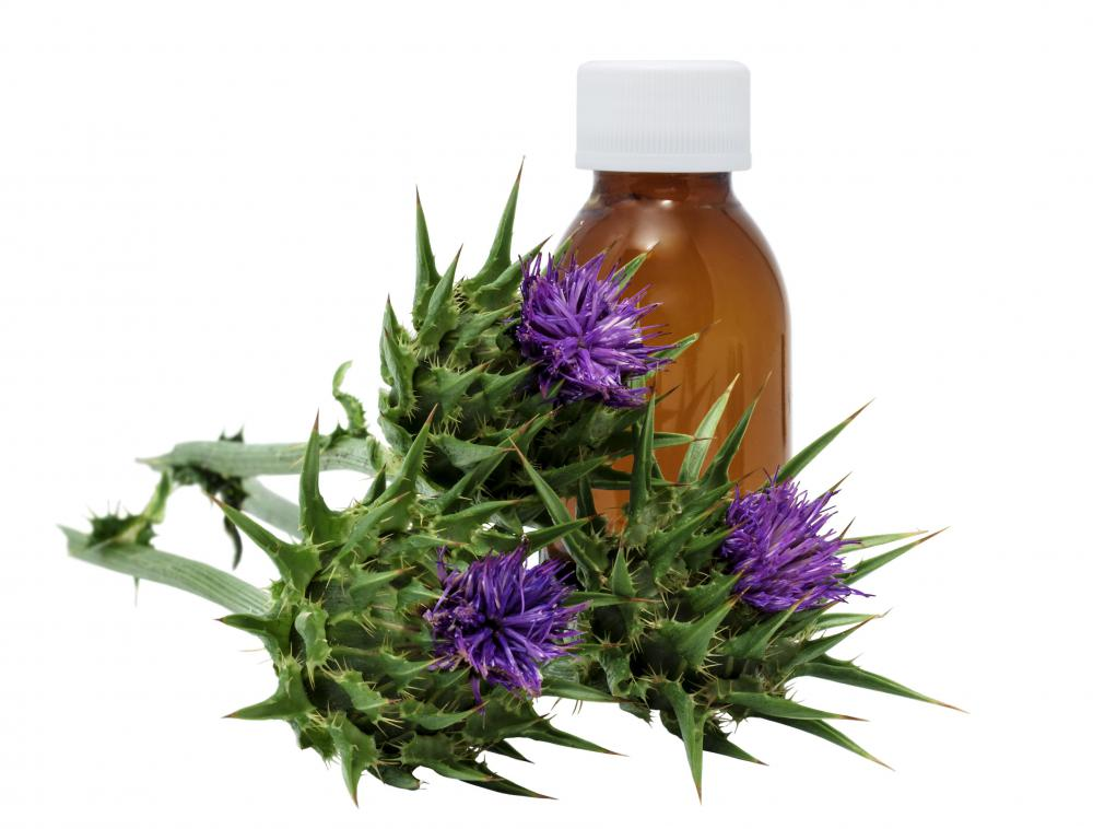 Milk thistle removes toxins and helps repair damaged tissue in the liver.