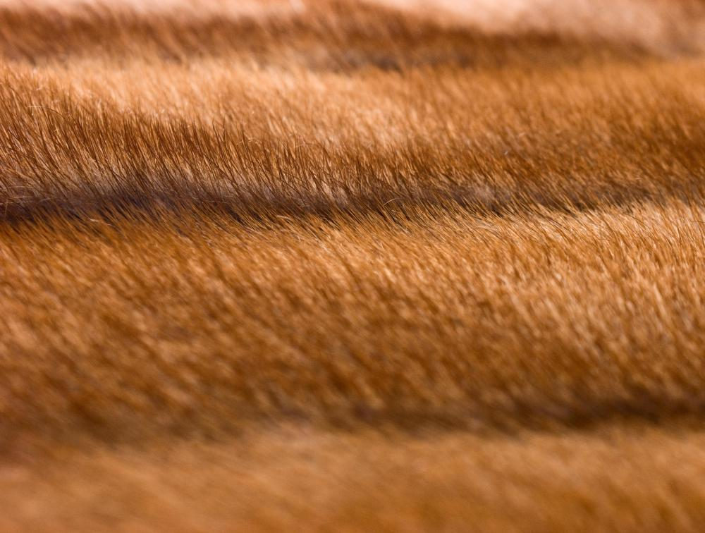 How Do I Care for a Mink Fur Coat? (with pictures)