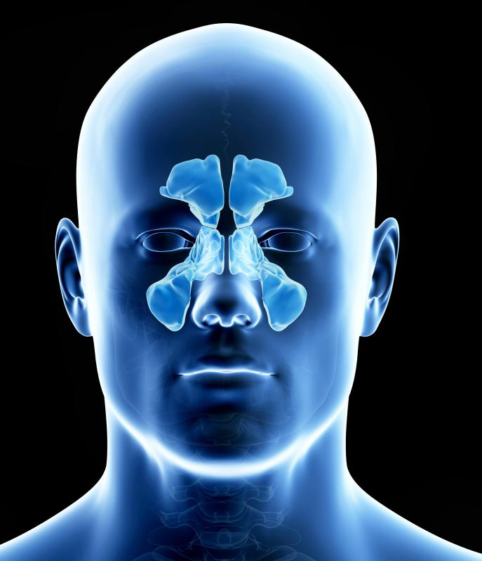 Shapes of the sinuses vary from person to person.