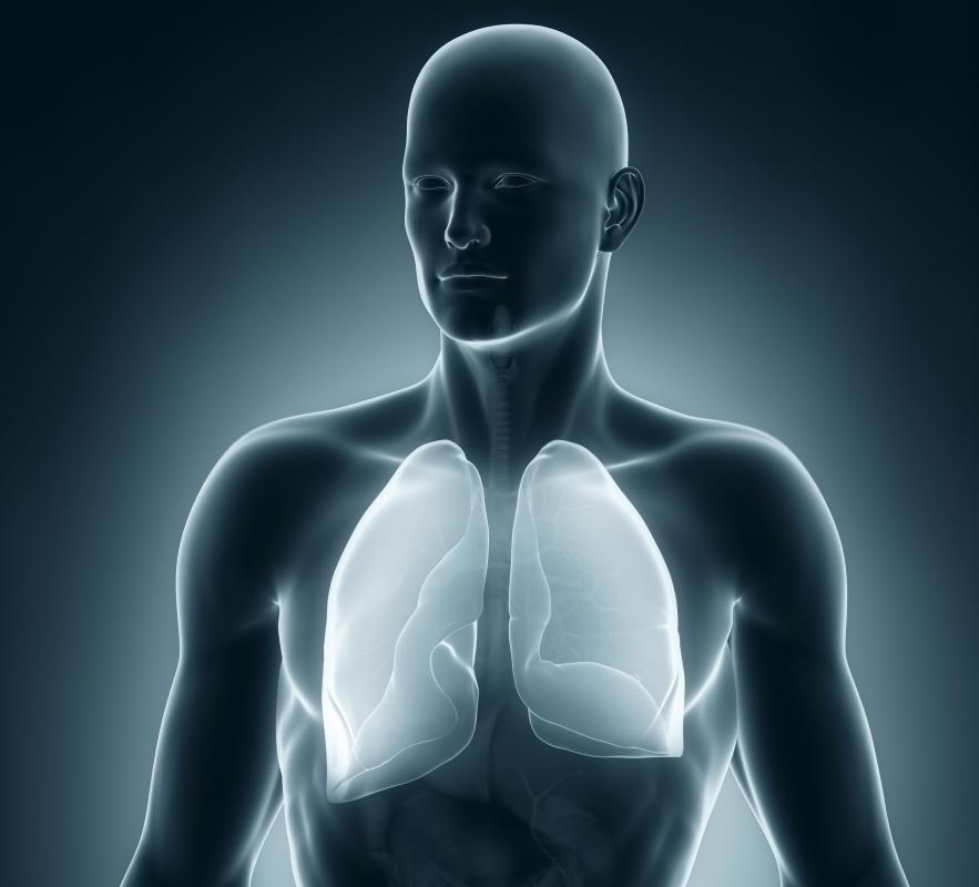 Bacteria can enter and start an infection anywhere in the body, such as the lungs.