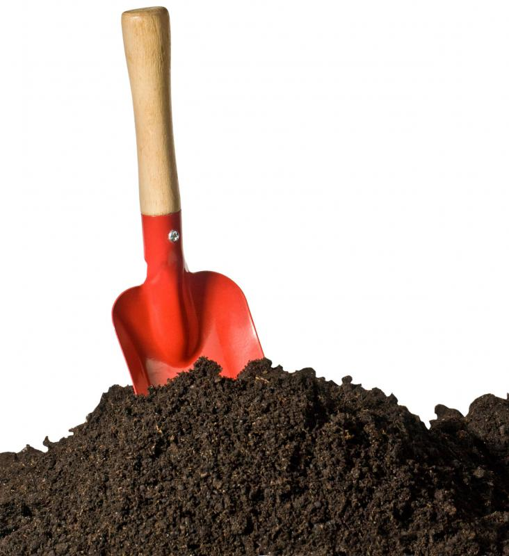 Dense soil holds more water than loose soil does.