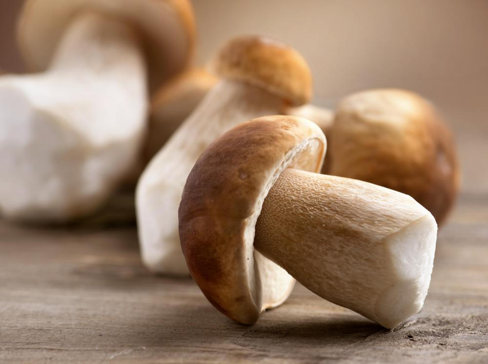 Most types of mushrooms are high in niacin, which helps elevate good cholesterol levels in the body.