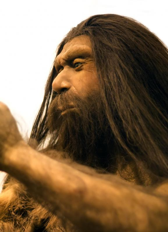 What are believed to be bone flutes have been found at Neanderthal archeaological sites.