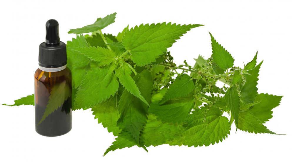Nettle leaf extract may be added to shampoo to provide treatment for eczema.