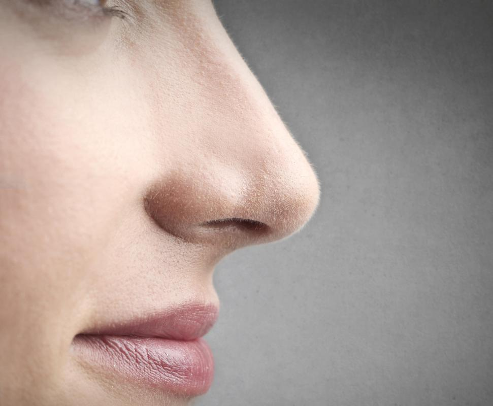 The interior lining of the nose is a  mucous membrane.