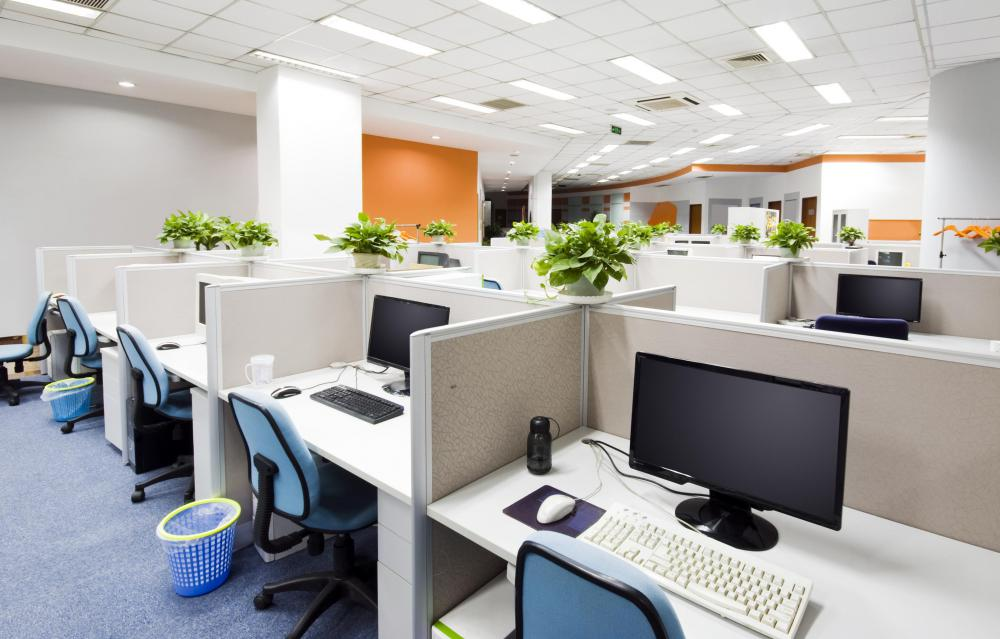 Skylights can be used to bring brightness to work areas like cubicles where providing each individual work space with enough lighting may be extremely challenging.