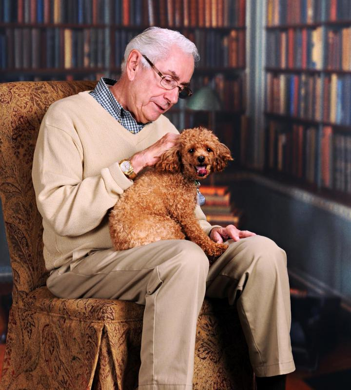 A therapy dog handler may take their dog to visit an elderly person.