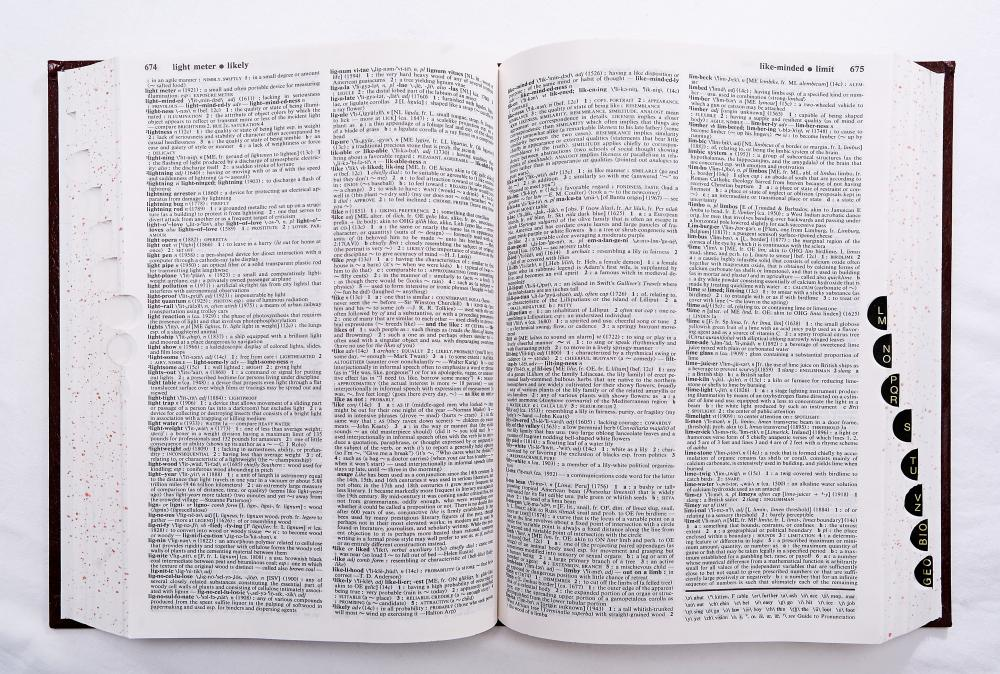 Pressing flowers between the pages of a dictionary is one way of drying them.