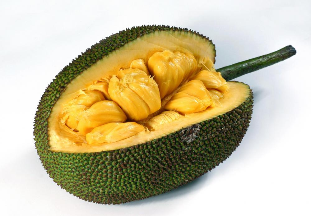 what is jackfruit? with pictures, Beautiful flower