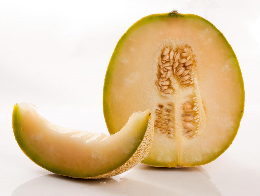 Honeydew melons contain protein.