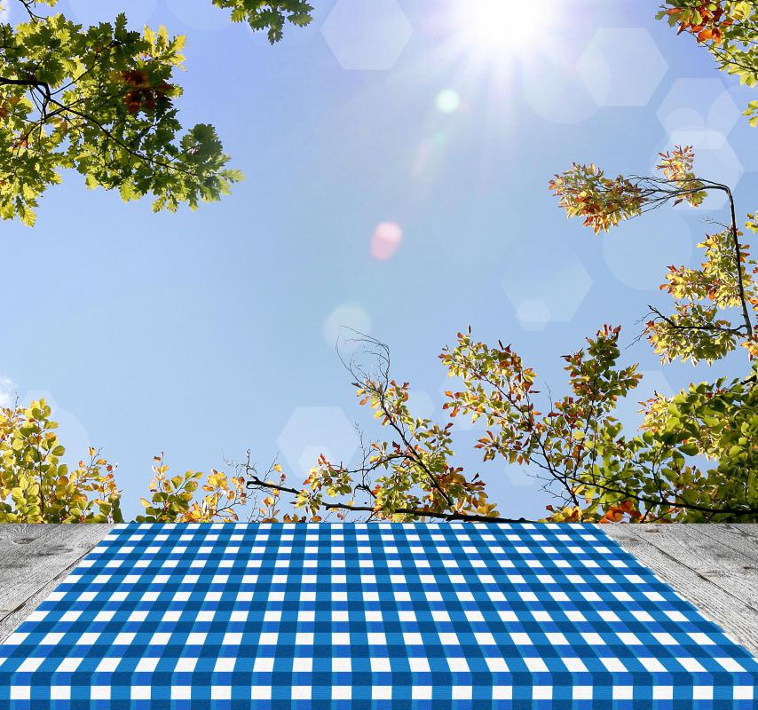 Vinyl Tablecloths May Be Made To Fit Tables For Picnicking Purposes.