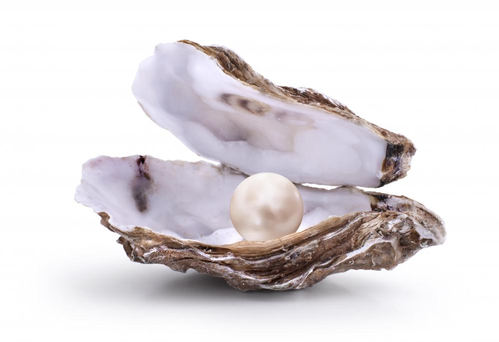 The name Pearl Jam may be a reference to an oyster creating a pearl out of an irritant.