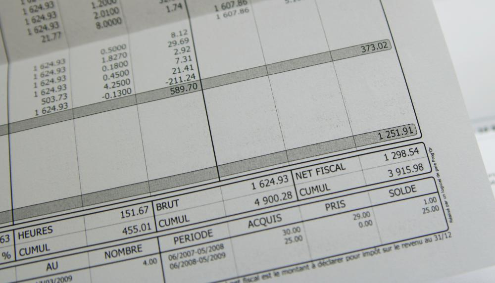 Employees decide how much is put into the account from each paycheck.