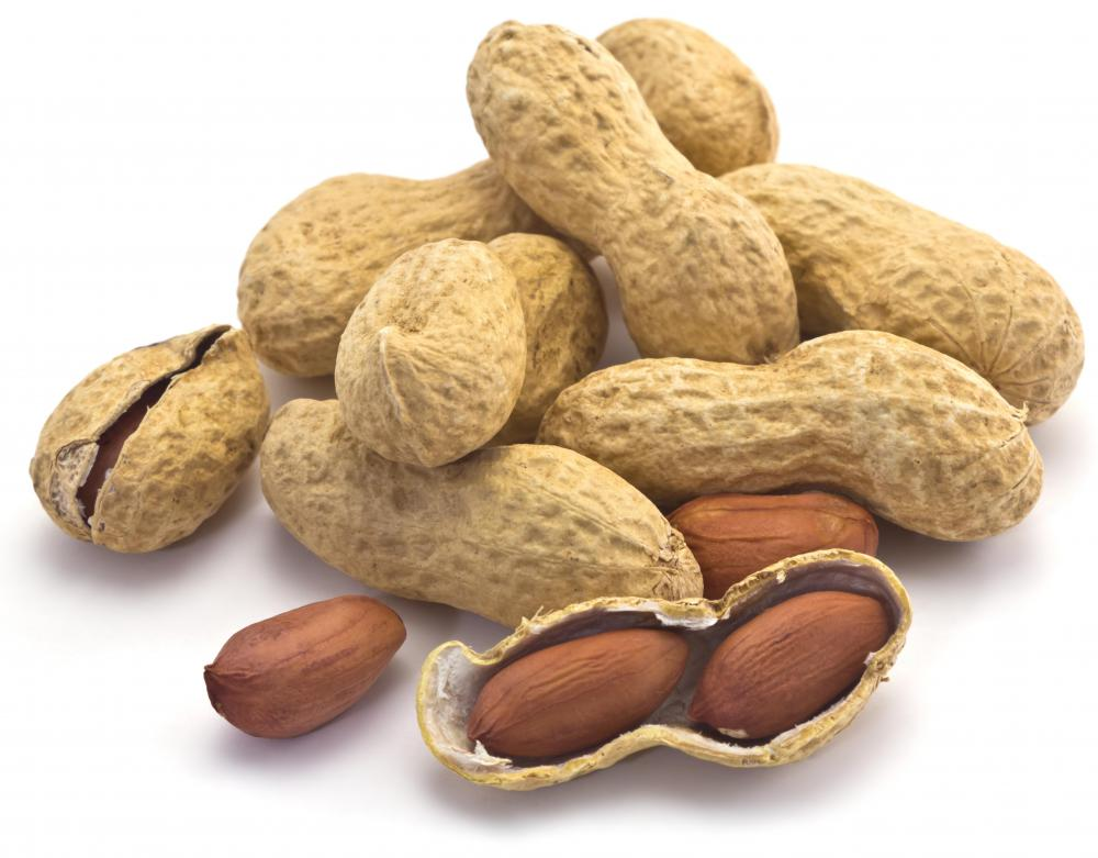 Peanuts can provide protein for vegetarians, but they also have fat, so they shouldn't be the primary source of protein.