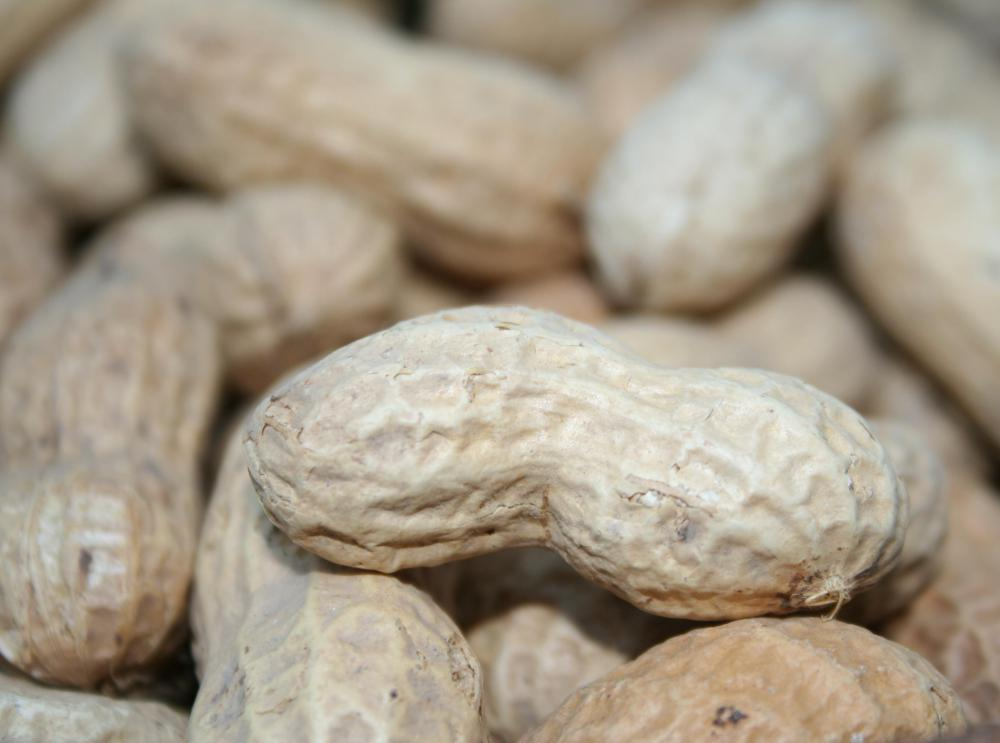 Allergens commonly responsible for anaphylaxis may include peanuts.