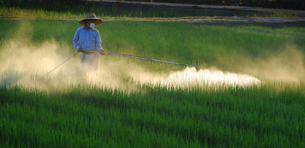 Farmworkers might be responsible for spraying pesticide on crops.