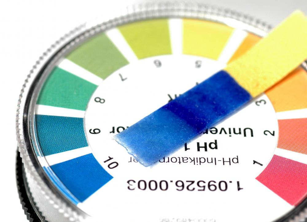 ph paper scale Ph paper, also called litmus paper, is filter paper that is treated with natural water soluble dye from lichens ph paper is used as an indicator to test the acidity.