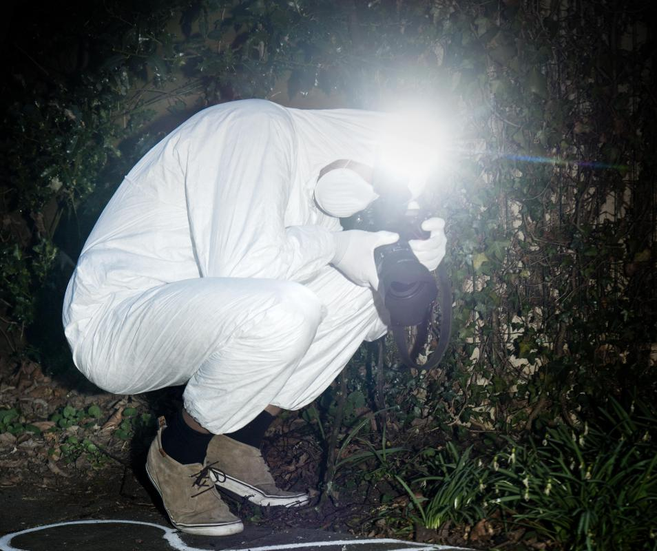 The flash of a camera can often startle nocturnal wildlife and cause them to relocate.