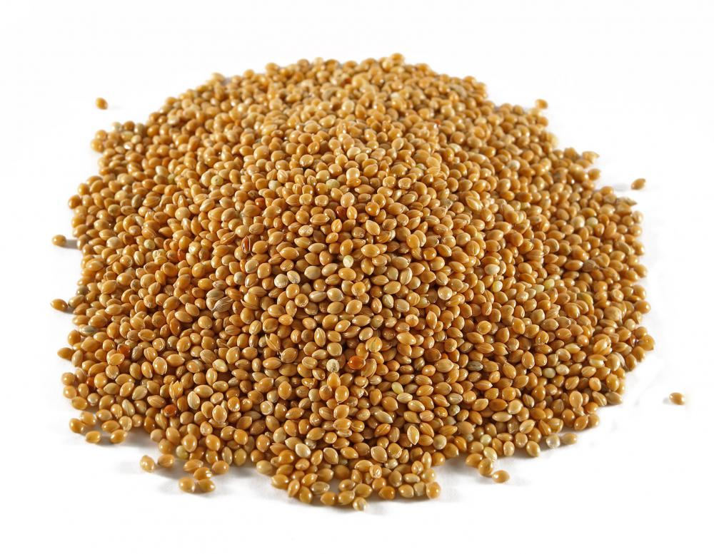 Pile of sorghum grain.