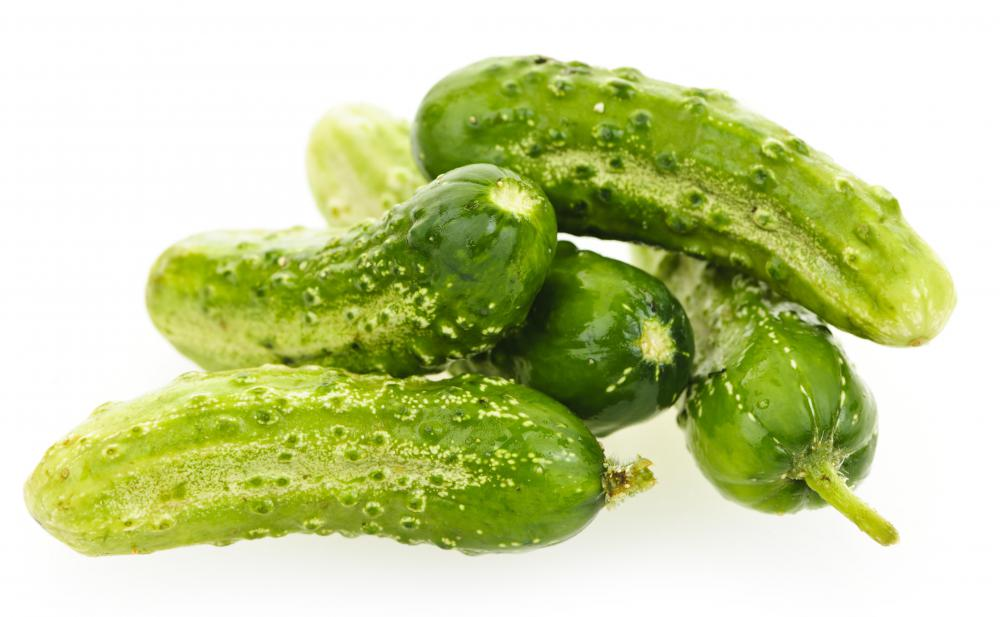 What is the Difference Between Pickling Cucumbers and Salad Cucumbers?