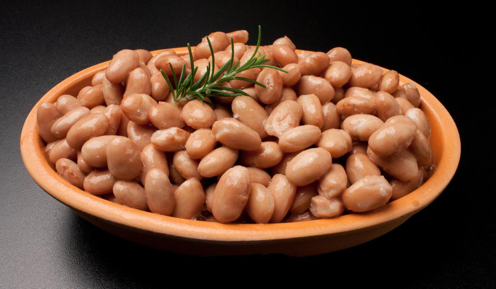 Pinto beans are a good source of protein, but health-conscious eaters should check the fat content before buying.
