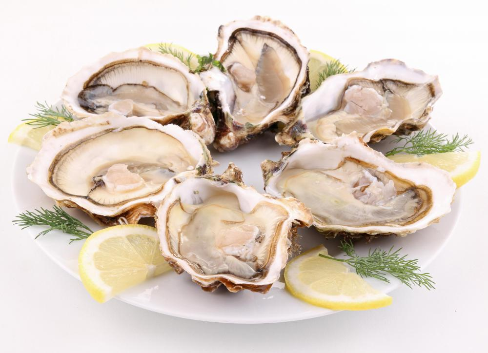 A plate of raw oysters on the half shell.