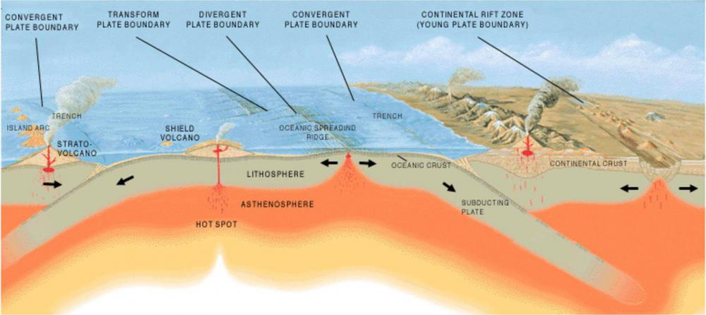 Much of the heat in the Earth's core, which drives plate tectonics, may be due to the radioactive decay of uranium and thorium.