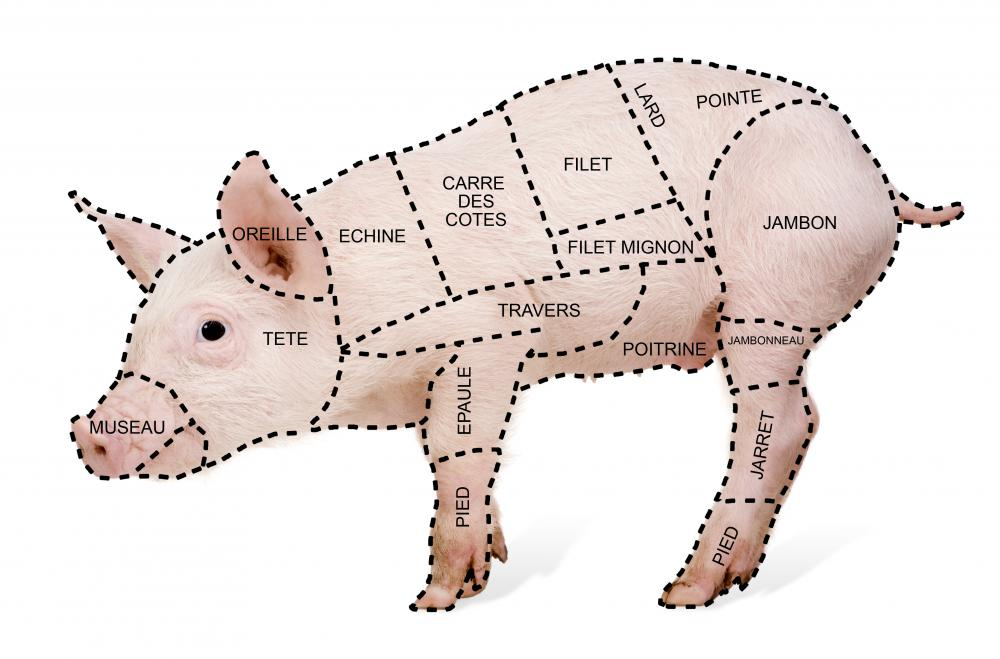 Cuts of pork taken from different areas of a pig will have varying degrees of fattiness.