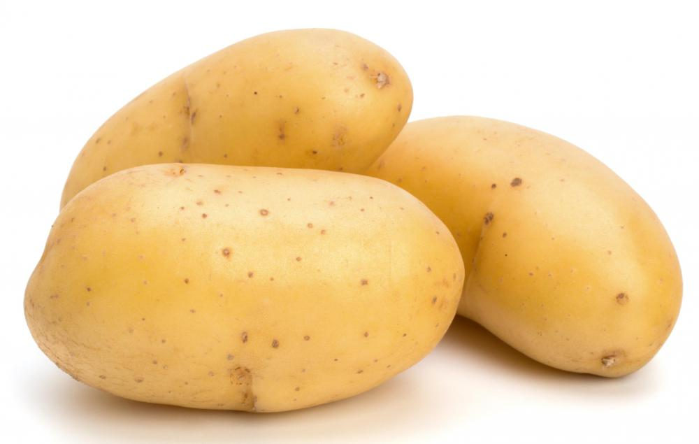 Potatoes are monocots, a type of angiosperm.