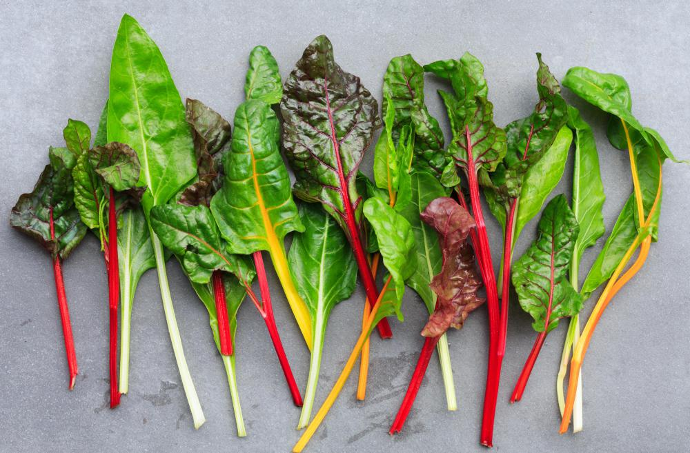 Chard can be a colorful addition to mesclun.