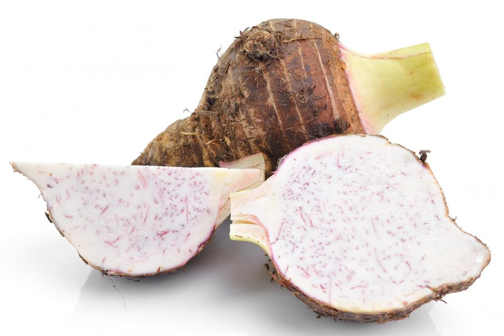 Taro must be properly boiled in order to neutralize its toxins.