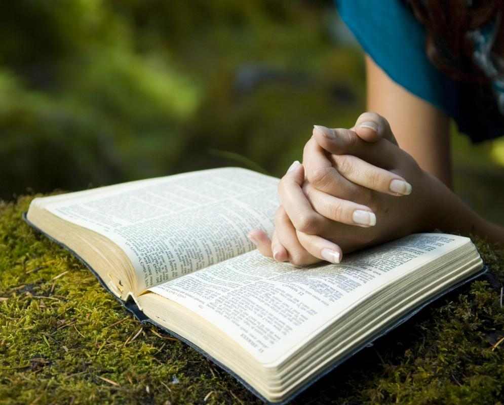 http://images.wisegeek.com/reading-bible-outside.jpg